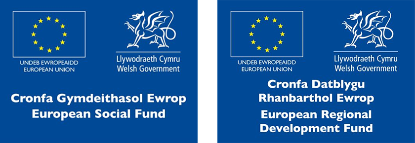 Welsh Government & European Support